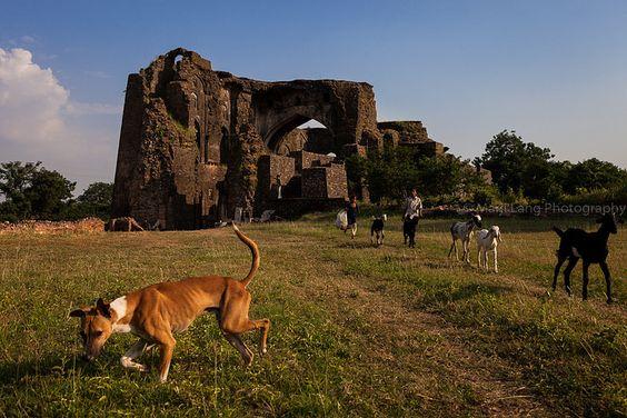 Ruins, Mandu