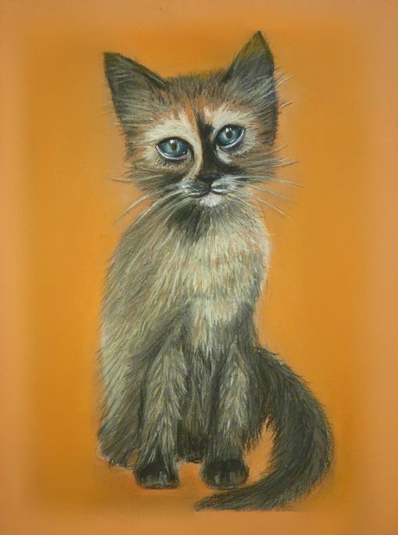 Original painting from the artist Cute cat by AtamanskiyArt