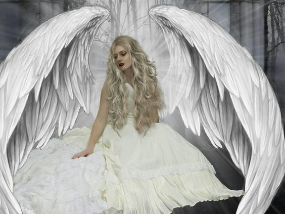 These are real angel wings, large enough to be beneath them and ...