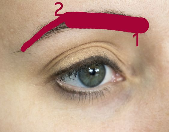 how to professional eye brows