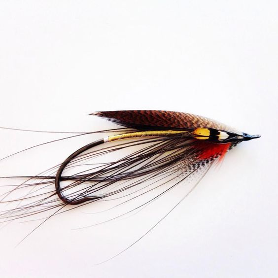 a no-name spey salmon fly tied by flyfishin'jam . flytyingforum, Fly Fishing Bait