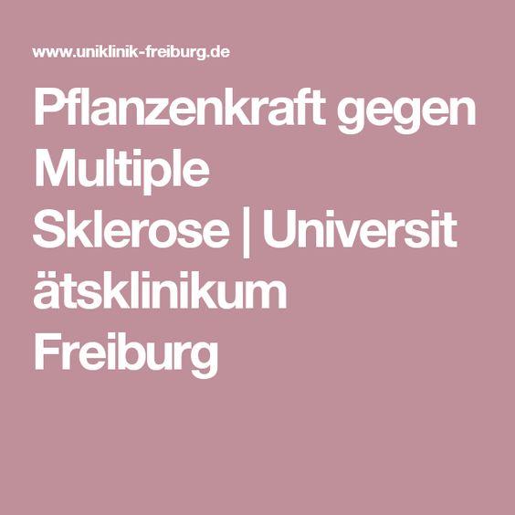 Pflanzenkraft gegen Multiple Sklerose|Universitätsklinikum Freiburg