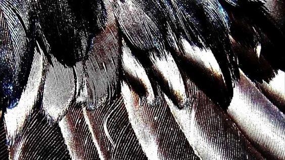 Upwellings - Breathe (Dub Techno)