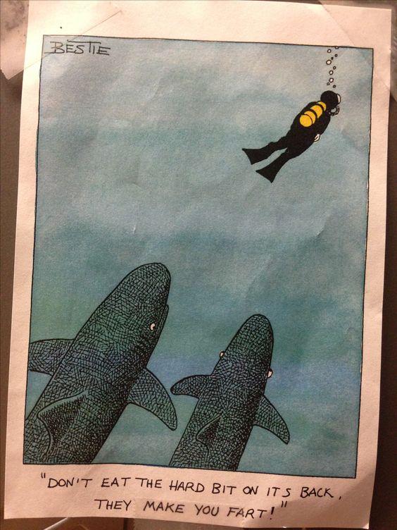 ilustração sobre mergulho