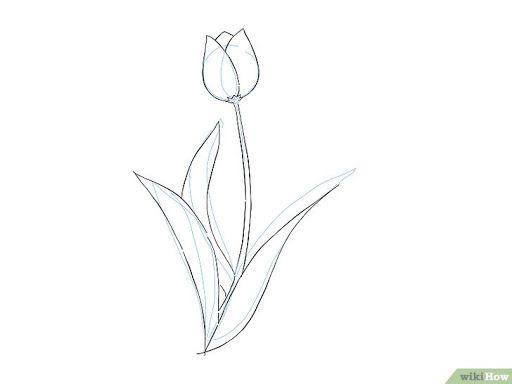 9 Cara Untuk Menggambar Bunga Wikihow Kesulitan Menggambar Kelinci Ini Cara Paling Mudah Step By Step 4 Cara Untuk Meng Gambar Perspektif Gambar Gambar Kelinci