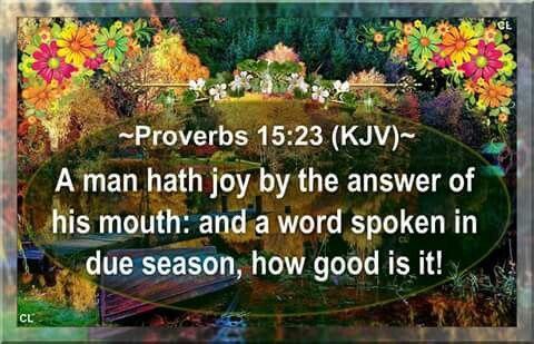 Proverbs 15:23 KJV