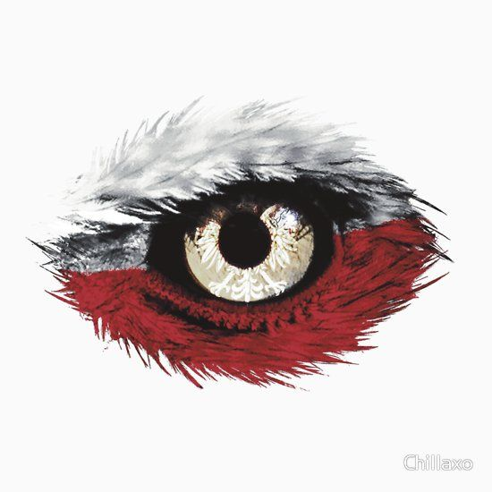 Polen Adler Flagge Classic T Shirt Polen Polnischer Adler Und