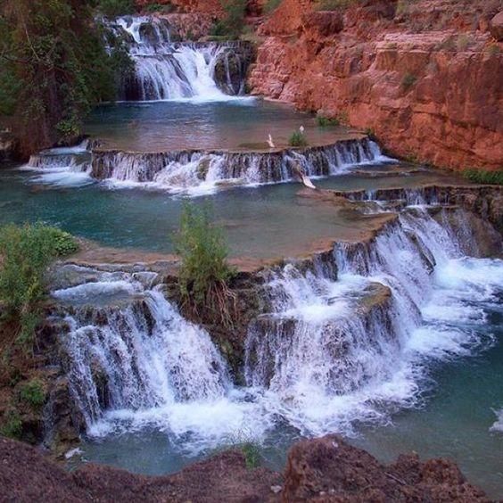 Arizona Gold Swimming: Havasupai - Mooney Falls? Author: TBD