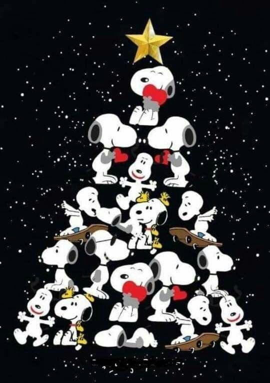 Immagini Dopo Natale.A Natale Son Tutti Piu Buoni E Il Prima E Il Dopo Che Mi