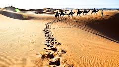 Merzouga - passeio de dromedário pelas dunas do sahara para ver o por do sol DIA 3