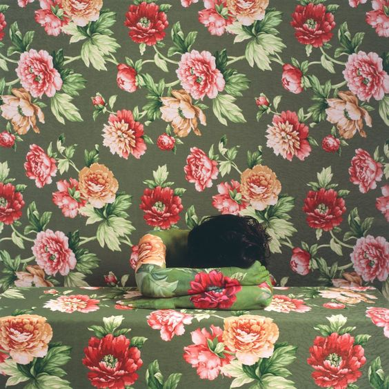 Dreaming Rose, 2009 Cecilia Paredes Disappears Into Wallpaper