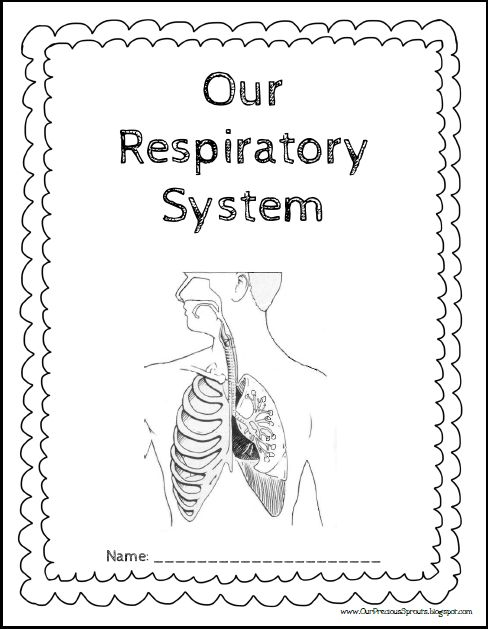 Our Precious Sproutsu0026#39; Homeschool Journal: Our Respiratory System Notebooking Pages : My Blog ...