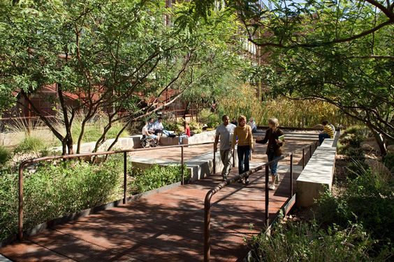 Ten eyck landscape architecture overall looks for Ten eyck landscape architects