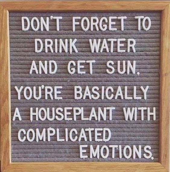 @brendastemple posted to Instagram: Self-care tip: be sure your basic needs are met daily! #tip #basicneeds #selfcare #sunshine #water #hydration #vitamind #mentalhealthawareness #healthylifestyle #healthyliving #healthychoices #sunrays #mentalhealthmatters #emotion