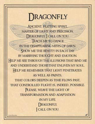 Dragonfly totem: You are full of light. It flows through you. You are constantly transforming throughout your life; each time closer to your highest evolved self.