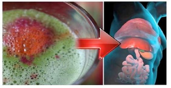 Regenera Tu Hígado En 5 Días Con Esta Increíble Receta ….NO TE ARREPENTIRAS!!…. | TUSALUDESVIDA