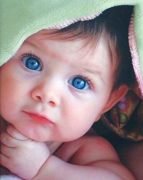 Cute Baby Dp : Babies, Images, Whatsapp, Photos,, Pictures