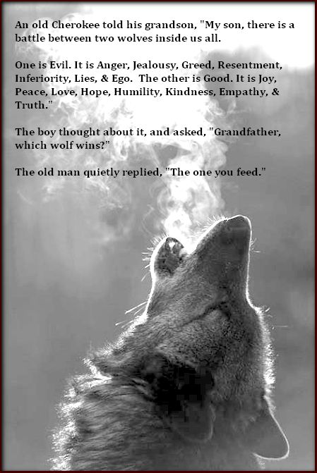 """An old Cherokee told his grandson, """"My son, there is a battle between two wolves inside us all. One is Evil. It is Anger, Jealousy, Greed, Resentment, Inferiority, Lies, and Ego. The other is Good. It is Joy, Peace, Love, Hope, Humility, Kindness, Empathy, & Truth."""" The boy thought about it, and asked, """"Grandfather, which wolf wins?"""" The old man quietly replied, """"The one you feed."""":"""