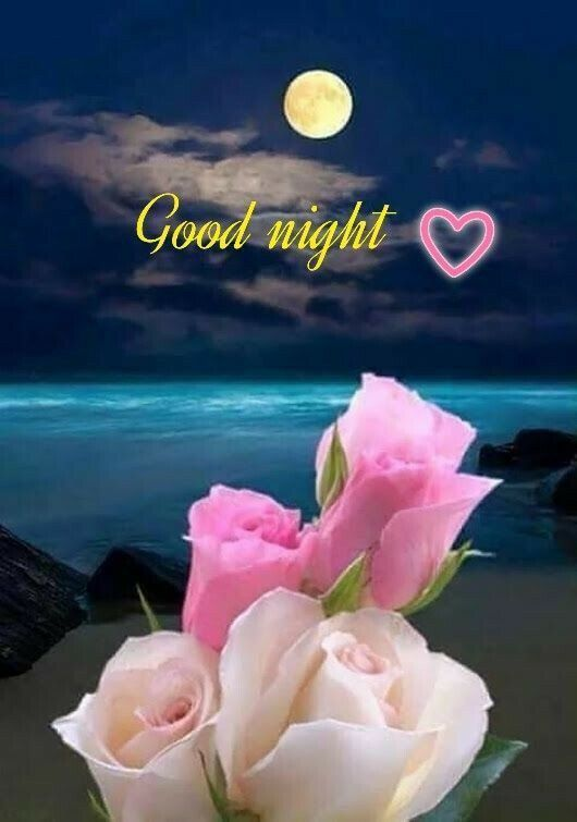 Gute Nacht Bild Good Night Wallpaper Wallpaper Ideas In 2020 Good Night Love Images Good Night Beautiful Good Night Flowers