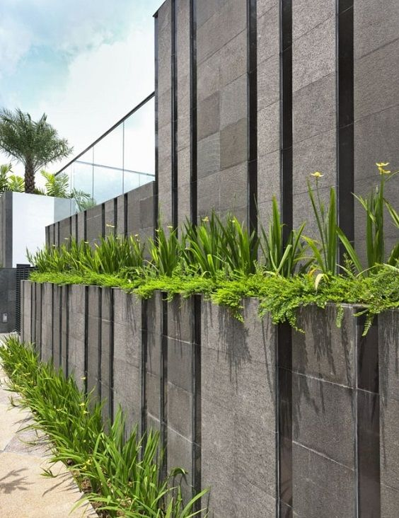 25+ Best Concrete Fencing Design Ideas For Backyard ... Ideas For Backyard Wall on nursery ideas for wall, fountain ideas for wall, pantry ideas for wall, art ideas for wall, entryway ideas for wall, craft ideas for wall, storage ideas for wall, office ideas for wall,