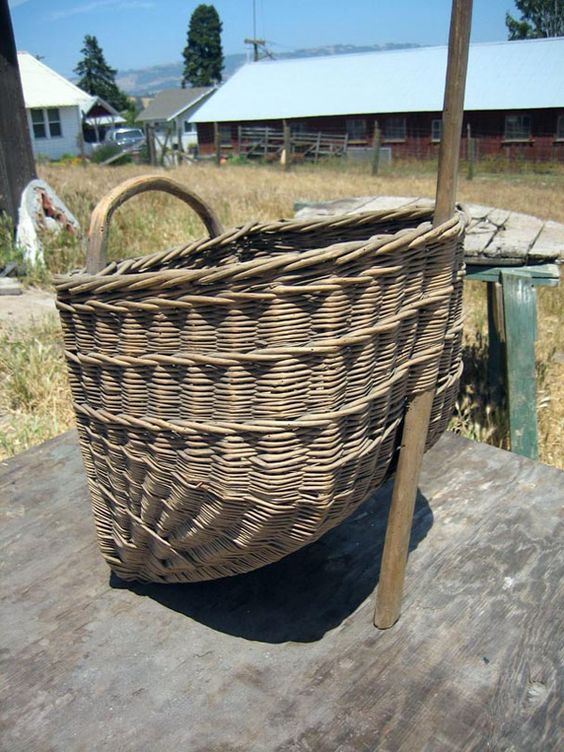 Basket Weaving Using Vines : Wine and vine things small grape gathering basket