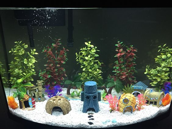 Spongebob aquarium our version of bikini bottom h o m for Decoration maison aquarium