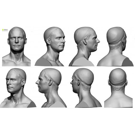 Male 05 Head Scan Cleaned