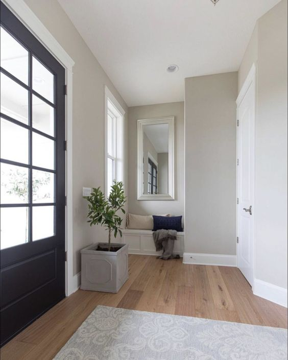 One of the ten most popular greige paint colors! Benjamin Moore Revere Pewter!