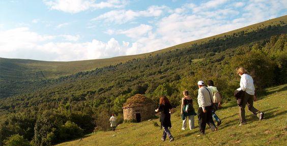 Excursión por el acebal de Garagüeta paseando cerca de la choza del pastor.