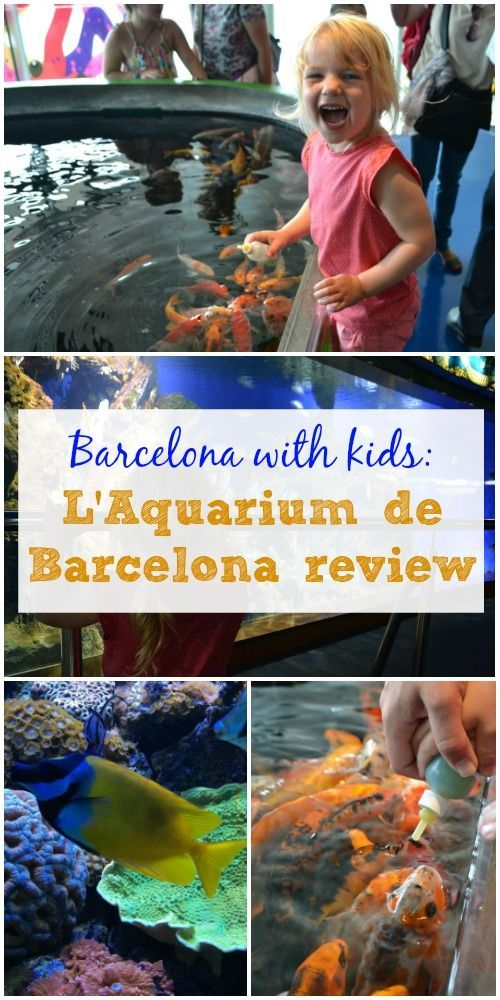 A visit to L'Aquarium Barcelona with two toddlers. This three storey aquarium is the largest dedicated to the Mediterranean Sea in the World. It has a floor dedicated to children with lots of interactive activities for them to try, including feeding carp.