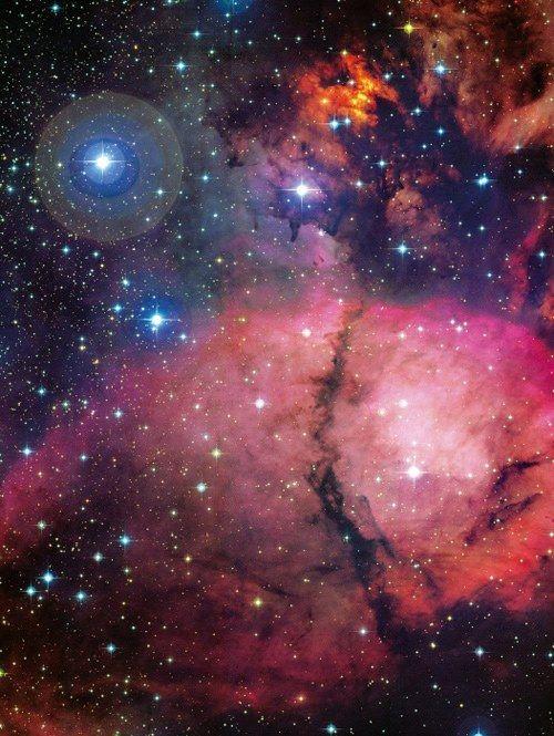 NGC 896, uma nebulosa escura composta de gás e poeira, permitindo que a matéria-prima para o processo de formação de estrelas. Depois de tornar-se livre de seu nascimento mortalha, as estrelas mais massivas, azul e quente, emitem radiação causando o brilho vermelho do gás hidrogênio.