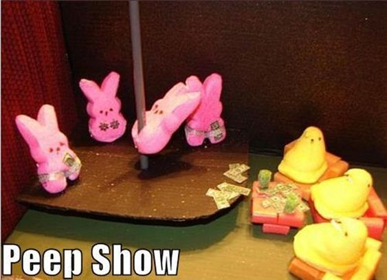 Funny Easter Bunny Quotes and Pictures (10)