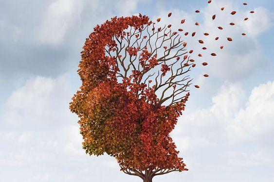#Le lien social, meilleure arme contre la maladie d'Alzheimer - Le Vif: Le Vif Le lien social, meilleure arme contre la maladie d'Alzheimer…