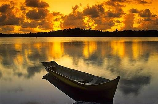 Oportunidade única para adquirir 21.1 hectares de terra com acesso direto as águas calmas da Baía de Camamú.