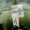 Syria's Chemical Secret: Israel Raises Alarm