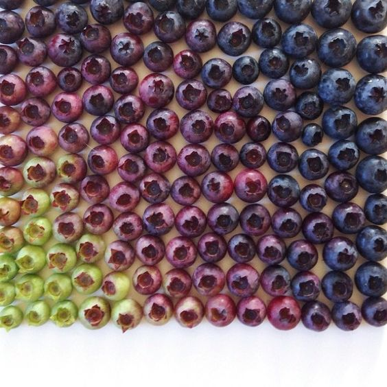 According to colors and sizes, Brittany Wright imagines amazing fruits, vegetables and foods compositions l #photography #colors #foodart