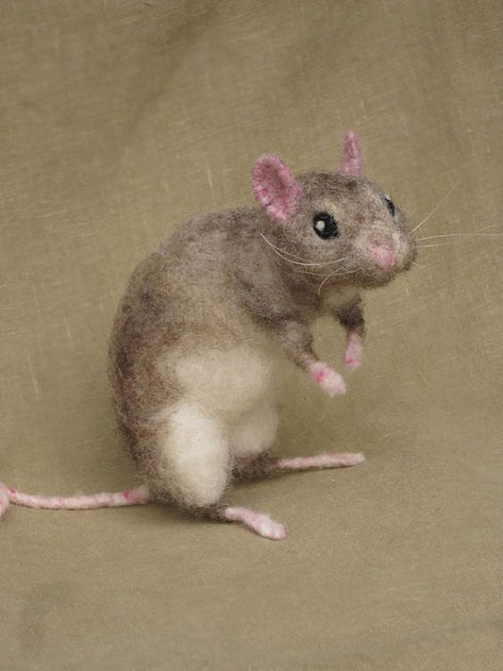 Lab rats, Pets and Felting on Pinterest