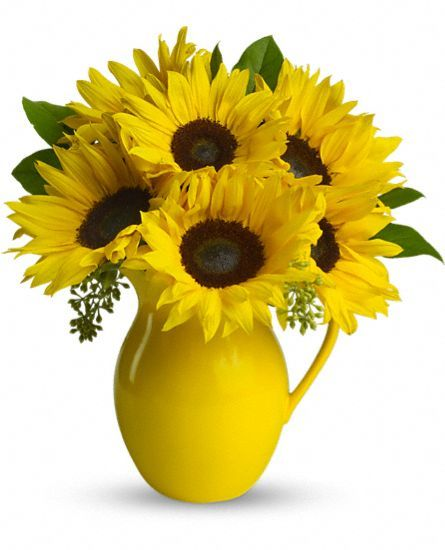 Teleflora's Sunny Day Pitcher of Sun Flowers: