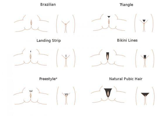 ... asked questions about Brazilian bikini waxing-bikini line style design
