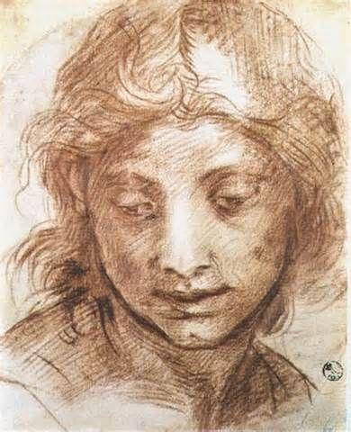 andrea del sarto drawings - Yahoo Image Search Results
