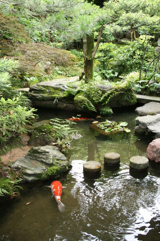 Japanese garden japanese gardens pinterest gardens for Koi ponds and gardens