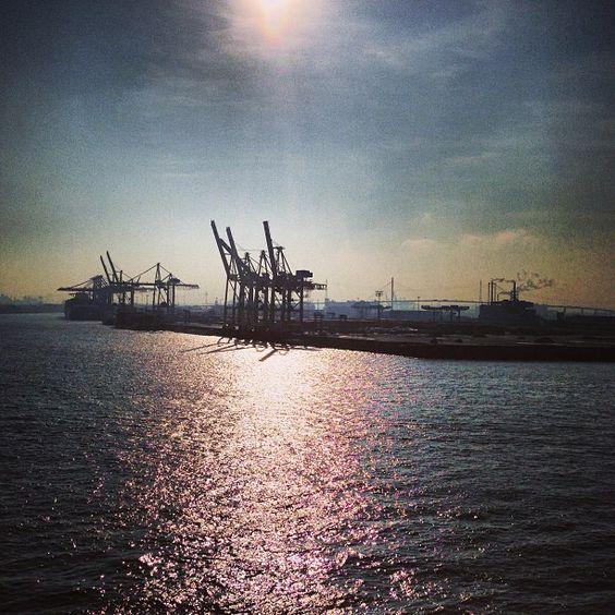 Klater Wintertag im Hamburger Hafen