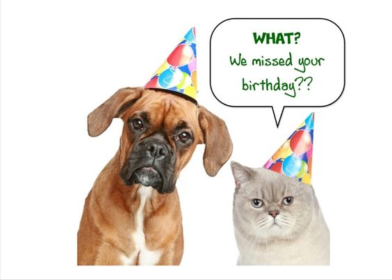 Belated Birthday Card with Cat and Dog on the front Send free – Send Free Birthday Card