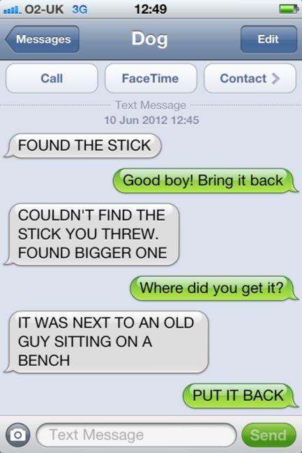 Dog text....wrong stick