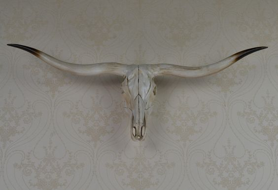 wall mounted longhorn ox skull wall art plaque hunt sculpture-faux taxidermy modern hanging home decor ornamnent