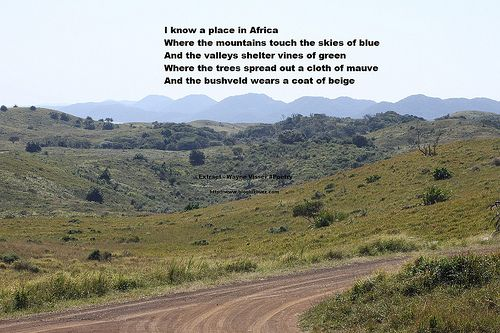 I know a place in Africa Where the mountains touch the skies of blue And the valleys shelter vines of green Where the trees spread out a cloth of mauve And the bushveld wears a coat of beige ===================================== Poetry In Motion..... I know a place in Africa... More inspiring poetry written by Wayne Visser, a South African currently based in Nottingham, UK. Photographs - Joan Stewart http://blogbizbuzz.com