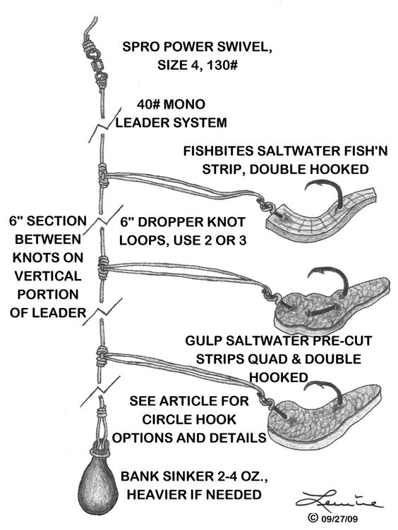 Saltwater baits and rigs vermillion candy designed as a for Bottom fishing rods