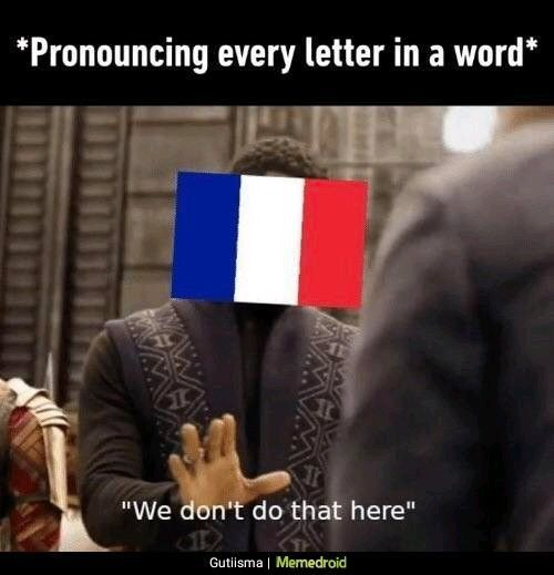 French Language Funny Meme French French Funny Language Meme Funny French French Meme Really Funny Memes