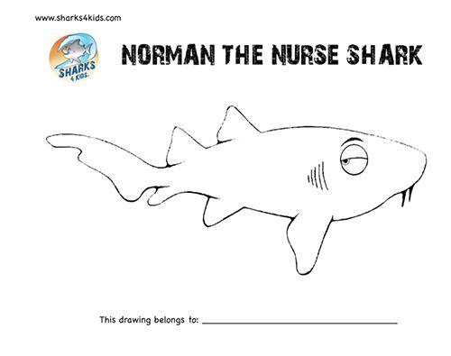 Thresher Shark Or Fox Shark Super Coloring Shark Coloring
