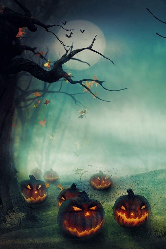 Jack o, Jack o' lantern and Jack o'connell on Pinterest